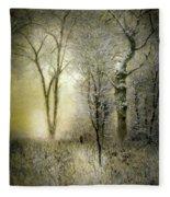 Rimy Forest Windy Daybreak By Laszlo Mednyanszky 1896 Fleece Blanket