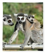 Ring Tailed Lemurs With Baby Fleece Blanket