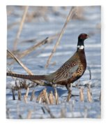 Ringneck Pheasant Rooster In Snow Fleece Blanket