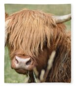 Ringo - Highland Cow Fleece Blanket