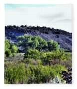 Rio Grande River Valley Fleece Blanket