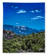 Rio Hondo Arroyo View Fleece Blanket