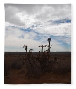 Rio Rancho New Mexico Fleece Blanket