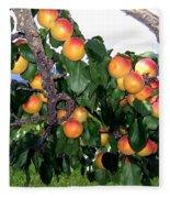 Ripe Apricots Fleece Blanket