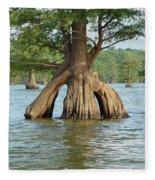 Ripley Tennessee Cypress Fleece Blanket