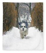 Ripley's Run Fleece Blanket