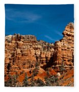 Rippled Walls Fleece Blanket