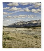 River Bed In Denali National Park Fleece Blanket