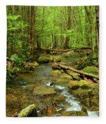 River Crossing On The Maryland Appalachian Trail Fleece Blanket