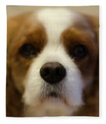 River Dog Closeup Fleece Blanket