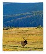 Rmnp Plains In Autumn Fleece Blanket