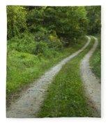 Road In Woods 1 D Fleece Blanket