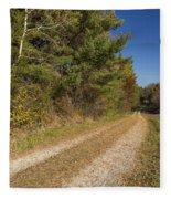 Road In Woods Autumn 6 Fleece Blanket