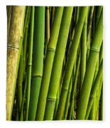 Road To Hana Bamboo Panorama - Maui Hawaii Fleece Blanket