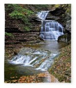 Robert Treman Waterfall Fleece Blanket