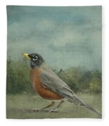 Robin Abstract Background With Texture Fleece Blanket