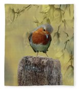 Robin Bird Fleece Blanket