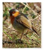 Robin In Hedgerow 3 Fleece Blanket