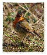 Robin In Hedgerow 2 Inch Donegal Fleece Blanket