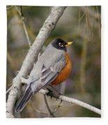 Robin In Tree 2 Fleece Blanket