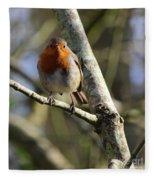 Robin On Branch Donegal Fleece Blanket