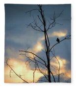 Robin Watching Sunset After The Storm Fleece Blanket