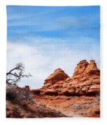 Rock Formations At Kodachrome Basin State Park, Usa Fleece Blanket