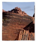 Rock Texture And Lichen Fleece Blanket