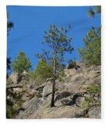 Rockin' Tree Fleece Blanket