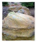 Rocks 4 Fleece Blanket