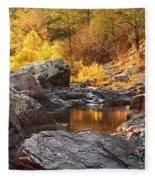 Rocky Creek II On Mill Mountain In The Missouri Ozarks Fleece Blanket