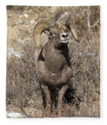 Rocky Mountain Big Horn Sheep Fleece Blanket