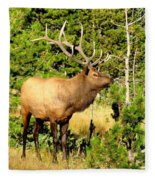 Rocky Mountain Elk Fleece Blanket
