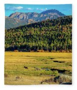 Rocky Mountain National Park Elk Fleece Blanket