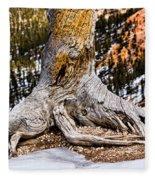 Roots Gripping The Edge Fleece Blanket