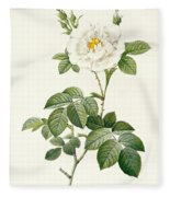 Rosa Alba Flore Pleno Fleece Blanket