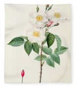 Rosa Damascena Subalba Fleece Blanket