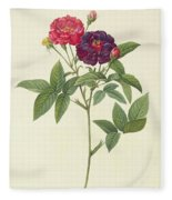 Rosa Gallica Purpurea Velutina Fleece Blanket
