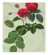 Rosa Holoferica Multiplex Fleece Blanket