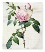Rosa Indica Fragrans Fleece Blanket