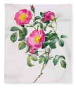 Rosa Lumila Fleece Blanket