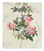 Rosa Multiflora Carnea Fleece Blanket