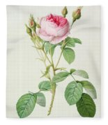 Rosa Muscosa Multiplex Fleece Blanket