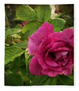 Rosa Rugosa Art Photo Fleece Blanket