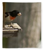 Rose Breasted Grosbeak Feeding Fleece Blanket