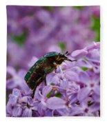 Rose Chafer On Lilac Fleece Blanket