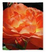 Rose Flower Art Prints Oragne Roses Summer Botanical Baslee Troutman Fleece Blanket