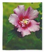 Rose Of Sharon Blossom Fleece Blanket