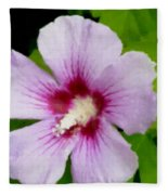Rose Of Sharon Close Up Fleece Blanket