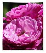 Rose Pink Purple Roses Flowers 1 Rose Garden Sunlit Flowers Baslee Troutman Fleece Blanket